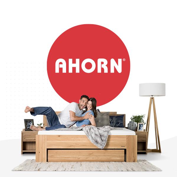 AHORN - Tvorba microsite, sociální sítě a PPC kampaně